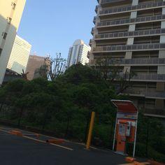 西新宿にある成子天神社の富士塚