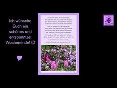 FG42 ☼ Schönes und entspanntes Wochenende ❤ (Video / Gedicht / Wochenendwünsche ...#SchönesWochenende #Wochenende #entspanntesWochenende #Wochenendwünsche #Wochenendgedicht  #Wochenendvideo #Wochenendvideos  #WochenendwünscheGedicht #Wochenendgrüße #Workaholics #Wokaholic #Gedicht #Gedichte #Lyrik #Poesie #Verse #Reime #Poem #Poetry #Lyric #Lyrics #Sprüche #Video #Videos #YouTube_Video #YouTubeVideo #YouTube_Videos #YouTubeVideos #VideoClip #GedichtVideo #Gedicht_Video #SmallYouTuber