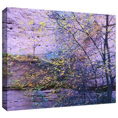 "Found it at Wayfair - ""Aravaipa Canyon Dusk"" by Dean Uhlinger Photographic Print…"