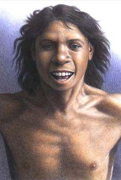 CVC. Atapuerca. «Homo antecessor»: una nueva especie para la filogenia humana.