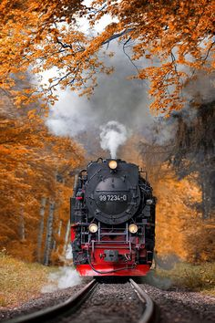 Locomotive in Autumn Train Tracks, Train Rides, Old Steam Train, Photo Background Images, Train Art, Train Pictures, Autumn Scenery, Old Trains, Beautiful Landscapes