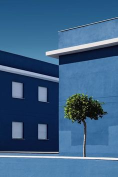 blue+blue architecture and nature by J Fernández