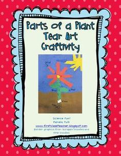 I do this tear art project every year with my first graders.  It is a great hands-on way to learn the parts of a plant!If you like this craftiv...