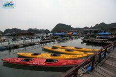 Des kayaks sont proposés pour faire le tour de l'île