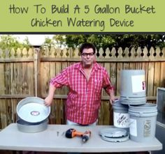 Here are instructions to build a chicken waterer using a 5 gallon bucket and a pan. This gives your flock easy access to large supply of fresh water. Chicken Feeders, Diy Chicken Coop, Chicken Water Feeder, Chicken Coup, Best Egg Laying Chickens, Raising Chickens, Backyard Farming, Chickens Backyard, Chicken Watering System
