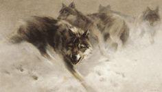National Wildlife Galleries: The Art of Manfred Schatz