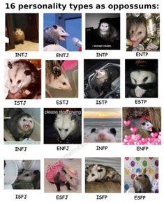 Infj Mbti, Esfj, Personalidad Infp, Mbti Charts, Intp Personality Type, Zodiac Personalities, Opossum, Retro, Random