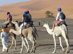 Morocco desert trips - Best Sahara tours with moroccosafaris