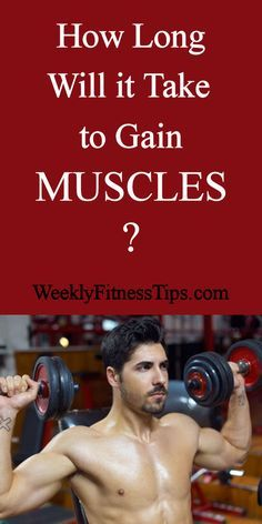 How Long Will It Take To Gain Muscles http://weeklyfitnesstips.com/how-long-will-it-take-to-gain-muscles/