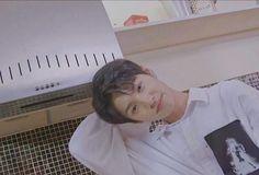 Produce 101, Mingyu, Pentagon, Yg Entertainment, Chara, Boyfriend Material, Ikon, Meme, Entertaining