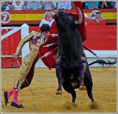 foto jesus extremadura: