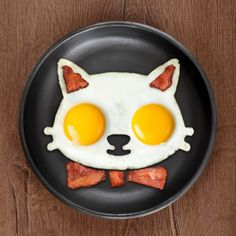 FUNNY SIDE UP Cat Egg Mold.    Holycool.net   Cool Stuff to Buy Online - Part 5