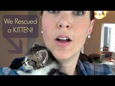 We Rescued A Baby Kitten #YouTube