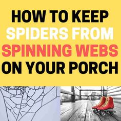 Spider webs on your porch? Learn how to stop spiders from making webs and clean up your deck! Keep Spiders Away, Get Rid Of Spiders, Keep Bugs Away, Spider Spray, Spider Webs, Natural Spider Repellant, Halloween Spider Decorations, Bug Off, Under Decks