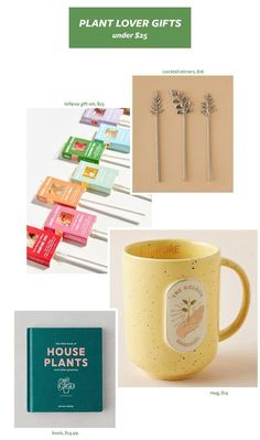 Annual Plant Lover Gift Guide My Annual Plant Lover Gift GuideMy Annual Plant Lover Gift Guide Plant Lover Gift Ideas, Gift Guide for Christmas & Holidays 2019 via Gift Ideas For Plant People (From Makers & Small Biz Owners) How to grow Spinach Bamboo In Pots, Terracotta Plant Pots, All About Plants, Plants Delivered, Rubber Tree, Plants Are Friends, Herbs Indoors, Growing Herbs, Growing Spinach