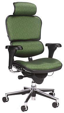 Ergoprise Ergonomic Store - Raynor Ergohuman Chair with Headrest - Choose Your Fabric - CU9ERG, $692.00 (http://www.ergoprise.com/raynor-ergohuman-chair-with-headrest-choose-your-fabric-cu9erg/)