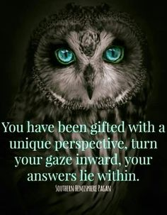 The owl is so quiet no one hears him coming.....