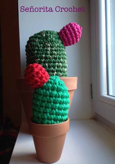 Cactus de trapillo. Señorita Crochet