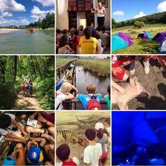 Le attività naturalistiche dei Campi Estivi 2014 del CUS Pisa Junior Polidisciplinare