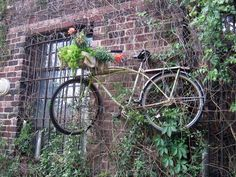 Vintage bike on garden wall