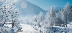 Bad Gastein, Hotels, Amazing Things, Winter Holidays, Places Ive Been, Beautiful Places, Outdoor, Image, Winter Scenery