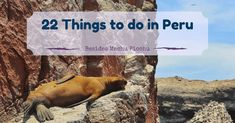 things to do in pery besides machu picchu hike when you travel to peru