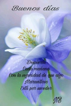 Salud Tutorial and Ideas Good Morning In Spanish, Good Morning Good Night, Good Day, Positive Phrases, Positive Quotes, Morning Love Quotes, Quotes En Espanol, Eyes Artwork, Morning Messages