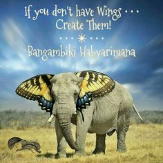 If you don't have Wings ~ Create Them ༺❁༻ Bangambiki Habyarimana .. WILD WOMAN…