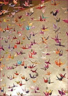 千羽鶴 thousand origami cranes - We did this once. It was a lot of fun. An ancient Japanese legend promises that anyone who folds a thousand origami cranes will be granted a wish by a crane. Some stories believe you are granted eternal good luck, instead o Diy Origami, Origami Paper Crane, Oragami, Paper Cranes, Origami Cranes, Hanging Origami, Origami Birds, Origami Wedding, Origami Butterfly