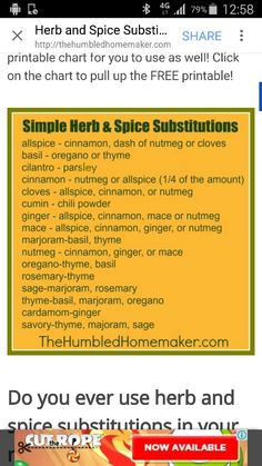 Cilantro, Healthy Living, Spices, Herbs, Thermomix, Spice, Healthy Life, Herb, Healthy Lifestyle