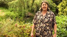 How to Prune Evergreen Azaleas Instructional Video w/ Plant Amnesty