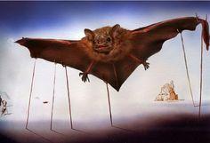 Bat Pics - Dali