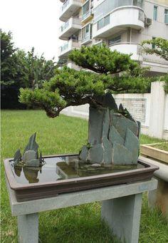 Bonsai rock planting. looks like DIY rock formation