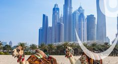 Stay at Habtoor Grand Beach Resort & Spa in Dubai (Jumeirah Beach Residence), you'll be minutes from Skydive Dubai and Dubai Marina.