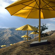"""Christo and Jeanne-Claude, """"The Umbrellas"""". The plan was to have yellow umbrellas set up in California and blue umbrellas in Japan at the same time, each measuring 6 meters in height and 8.66 meters in diameter. 1984–1991."""