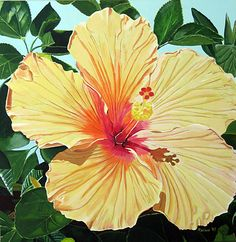 Original acrylic painting of hibiscus by Marlane Wurzbach - SOLD - all rights reserved