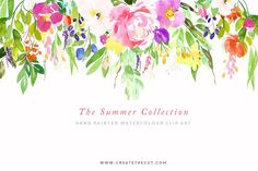 The Summer Collection - Illustrations