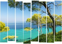 Thassos' natural environment, bursting with life, is rich in flora and fauna as well as mineral treasures which brought about prosperity on the island through commercial activities and constructions. Spring Nature, Turquoise Water, Private Garden, Flora And Fauna, Greece, Tourism, River, Island, Landscape