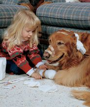 One of the reasons I love Goldens.....they are so sweet and patient with everyone.