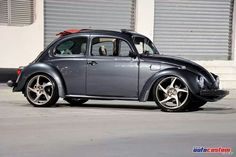 fusca ... beetle ... vw ... Bug