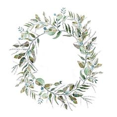 #tbt to this little wreath I painted a while ago inspired by Slangbos, Eucalyptus and Olive branches • • • #wreath #slangbos #eucalyptus #olivebranch #inspiredbynature #watercolour