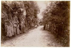 Bulli Pass