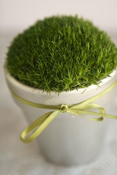 DIY: Little Pots of Moss - Cute for wedding. I wouldn't spray paint the terra cotta pot though. Either leave alone, do a paint wash, distress or hand paint small designs.
