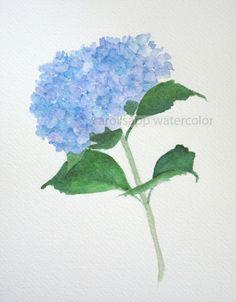 blue hydrangea watercolor flower painting archival 8 by carolsapp