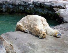 Ugh ...Mondays