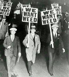 I always want weed  #marijuana #stoner #weed