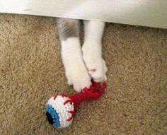 Crocheted Catnip Cat Toy Eyeball Visualizes Horror | PetsLady BEST CAT TOY EVER!!!!