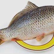 Sacher torta, klasszikus kedvencünk házi változatban - Blikk Rúzs Fish, Pisces