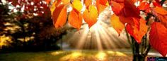 Fall Facebook Cover Facebook Covers