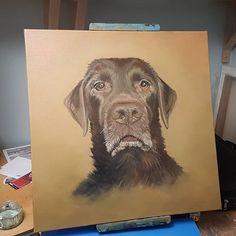 Kingsley Chocolate lab work in progress. Labrador Retriever, My Arts, Chocolate, Artwork, Dogs, Animals, Labrador Retrievers, Animales, Work Of Art